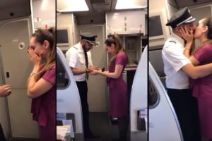 Pilot Proposed Beautiful Air Hostess